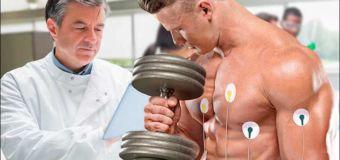 Разница между сердцем спортсмена и обычного человека: к чему приводят тренировки?