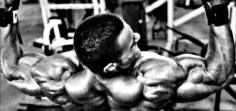Какие мышцы работают при подтягиваниях широким хватом?