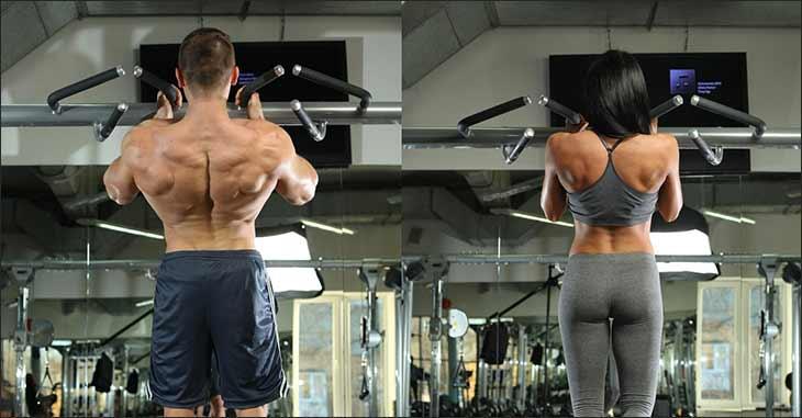 Какие мышцы работают в подтягиваниях узким хватом?