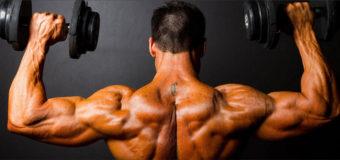 Как правильно и без ущерба для здоровья провести тренировку шеи?