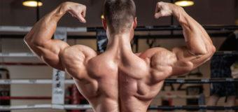 Как правильно делать разведения гантелей в наклоне и какие мышцы должны работать?