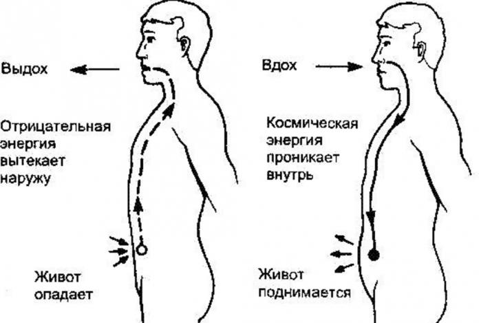 dyhatelnaya-gimnastika-dlya-umensheniya-zhivota