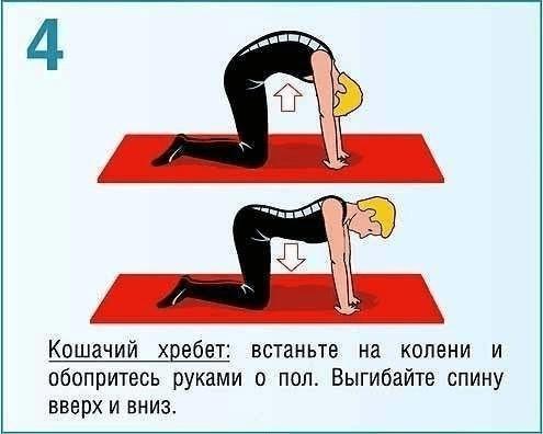 osanka_4